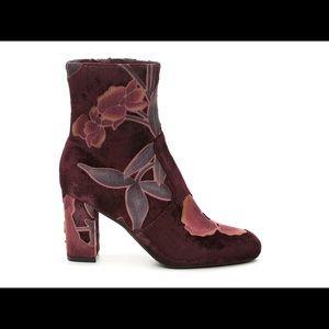 Steve Madden Elissa velvet floral ankle booties